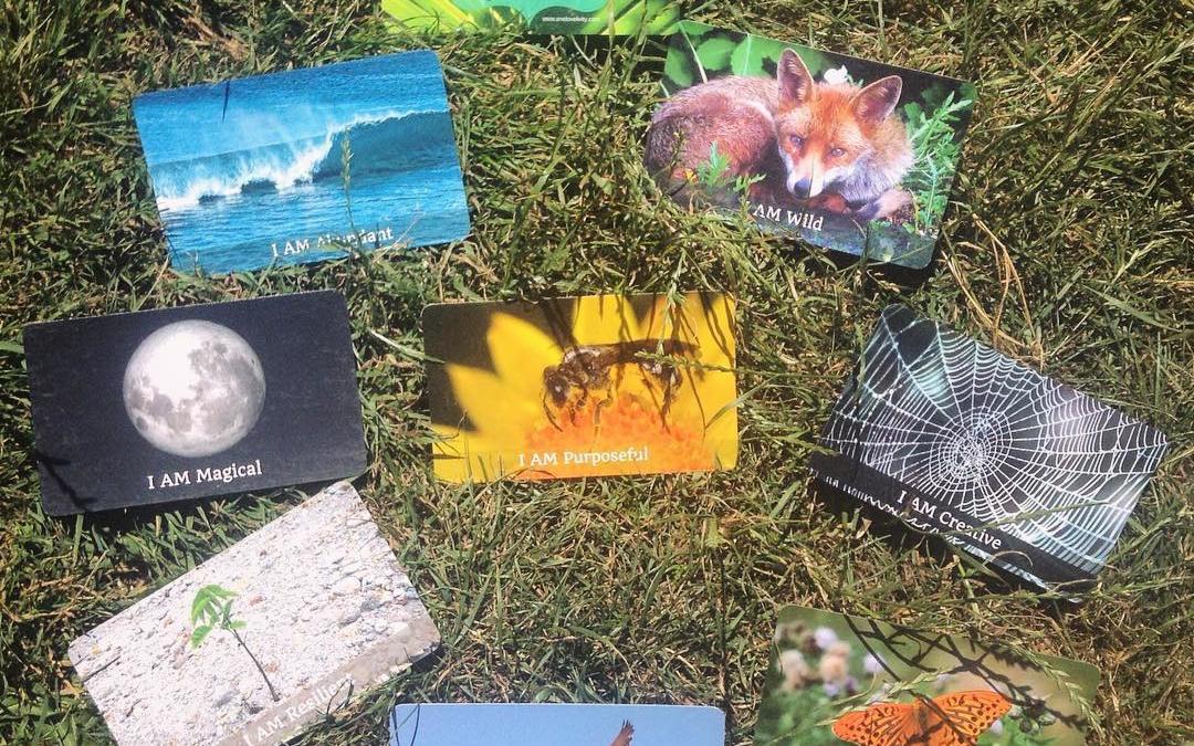 Nature Cards Anniversary